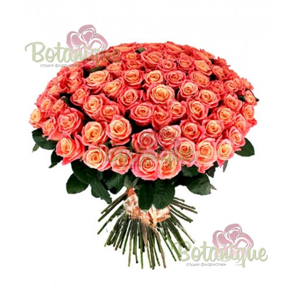 Шикарный букет 101 роз