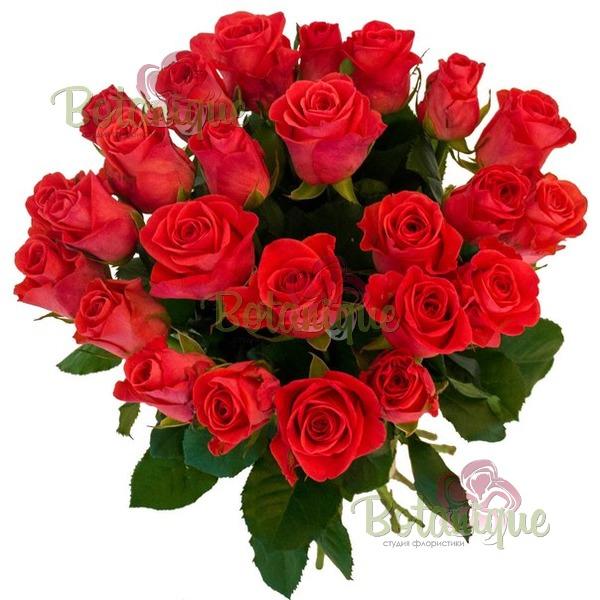 Букет 19 коралловых  роз