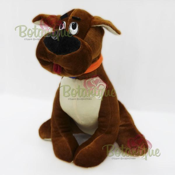 Собака Скубиду