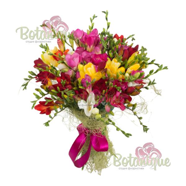 Заказ цветов фрезия срез шт гирлянды из распускающихся цветов заказать